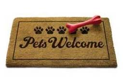 GrandStay Hotel & Suites in Glenwood NOW Pet Friendly!