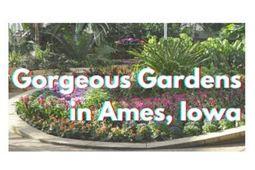 Grand Travel Planner: Reiman Gardens