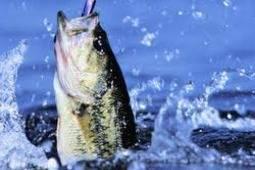 Spring Fishing Getaway