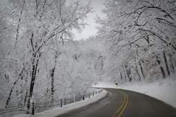 Winter Grand Savings