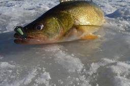 Ice Fishing Get Away Package