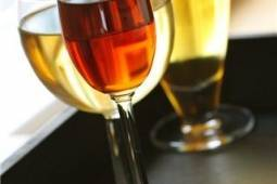 Savor the Flavors: Stillwater Wineries and Microbreweries